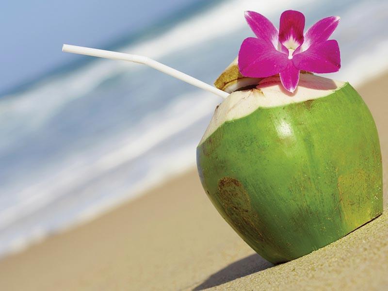 bali coconut water