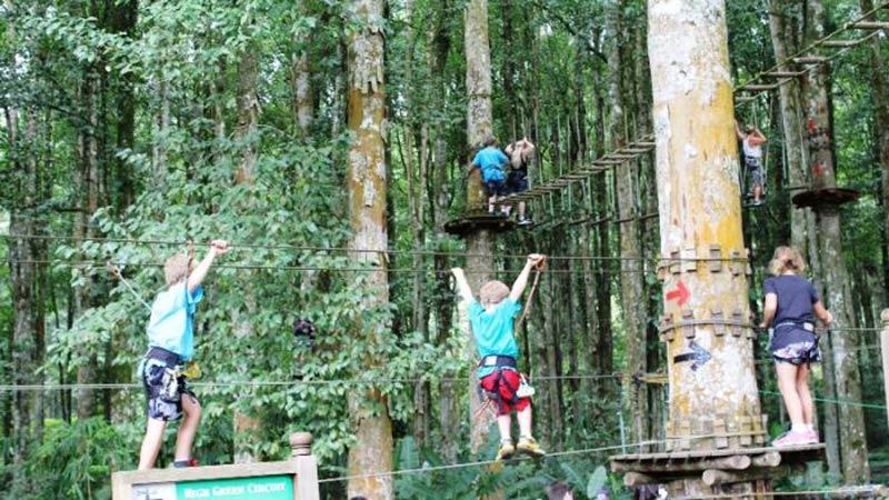 Bali with kids: Bali Treetop Adventure Park in Bedugul