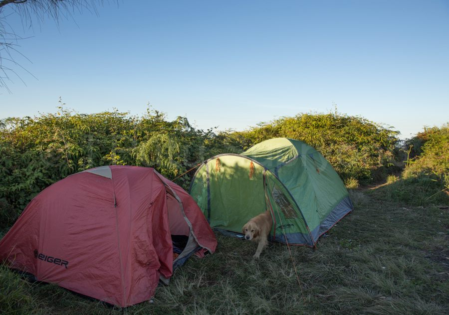Camping in Bali: Camping at Mount Batukaru