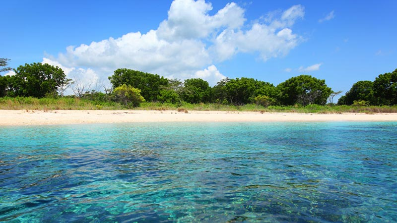 Camping in Bali: Menjangan island is located in West Bali National Park