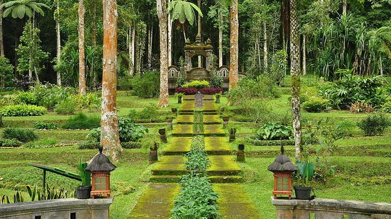 New year's eve 2017: Bali Botanical Gardens in Bedugul