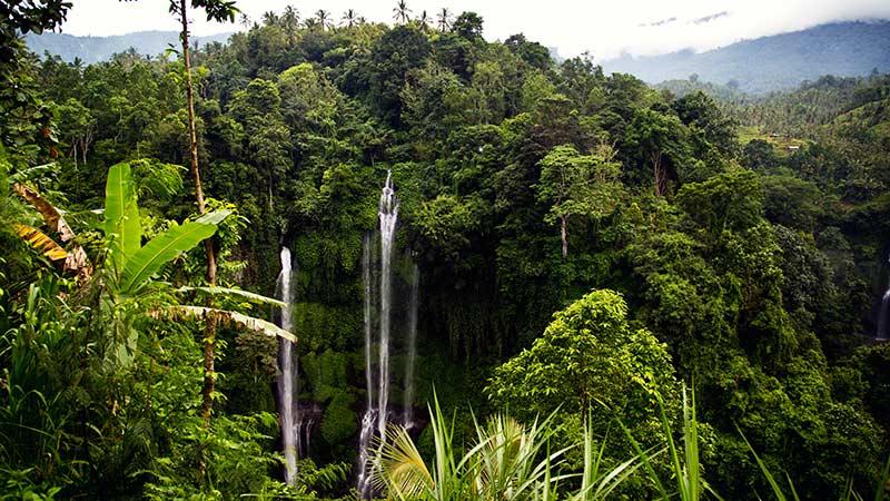 Sekumpul waterfall in Singaraja, Bali