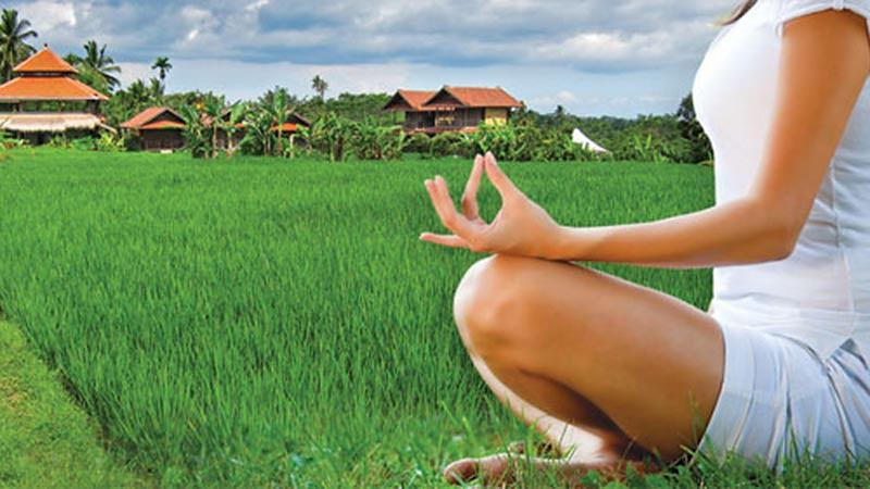 Travelling alone in Bali: Bali Silent Retreat in the middle of rice fields
